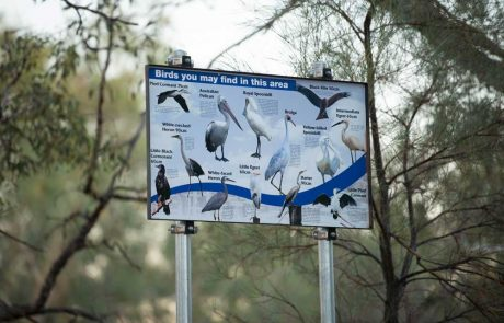 sign with birds seen in eulo